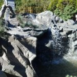 garden waterfall feature vancouver