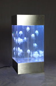 desktop jellyfish aquarium