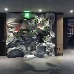 Indoor Rock Feature