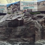 Water Features Waterfalls And Fountains: Vancouver, BC, Canada