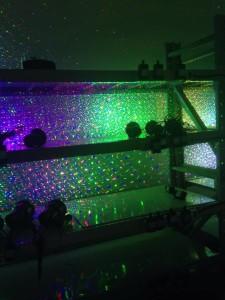 garden laser light factory