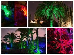 firefly laser light vancouver